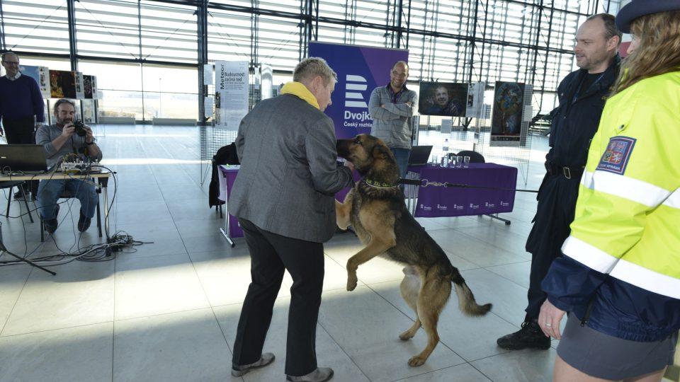 Pes Nero Celního úřadu Praha Ruzyně útočí na Světlanu Lavičkovou