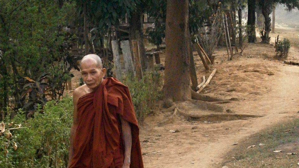 Barma zachycená objektivem Barbory Němcové
