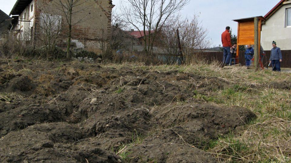Pole, kde se bude pěstovat křen