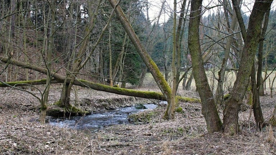Řeka a její okolí je zde ponechána v původní podobě a tvoří tak zajímavý biokoridor