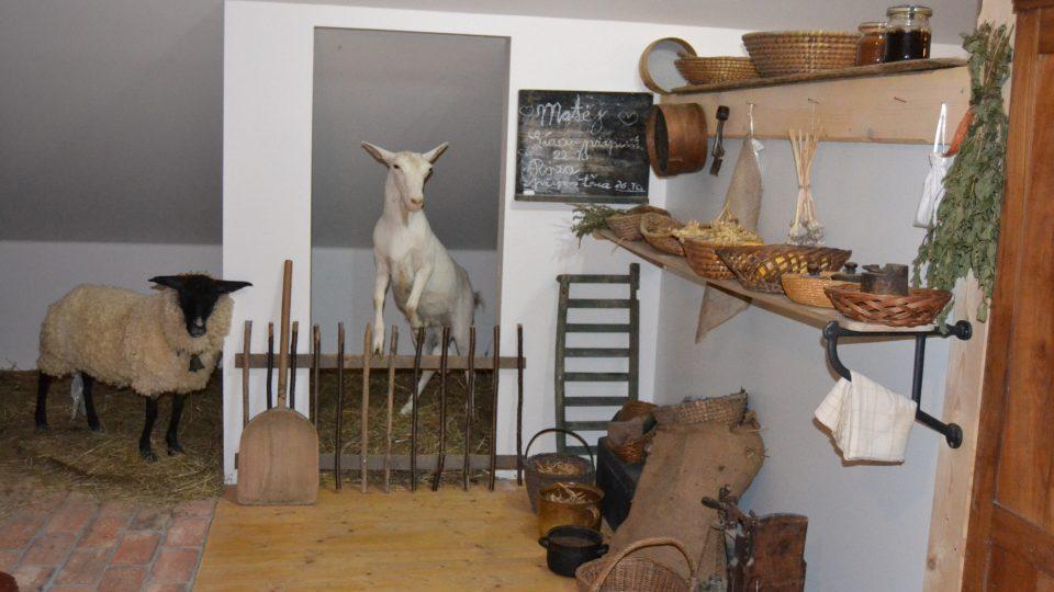 Skotnice na Novojičínsku - v obecním muzeu