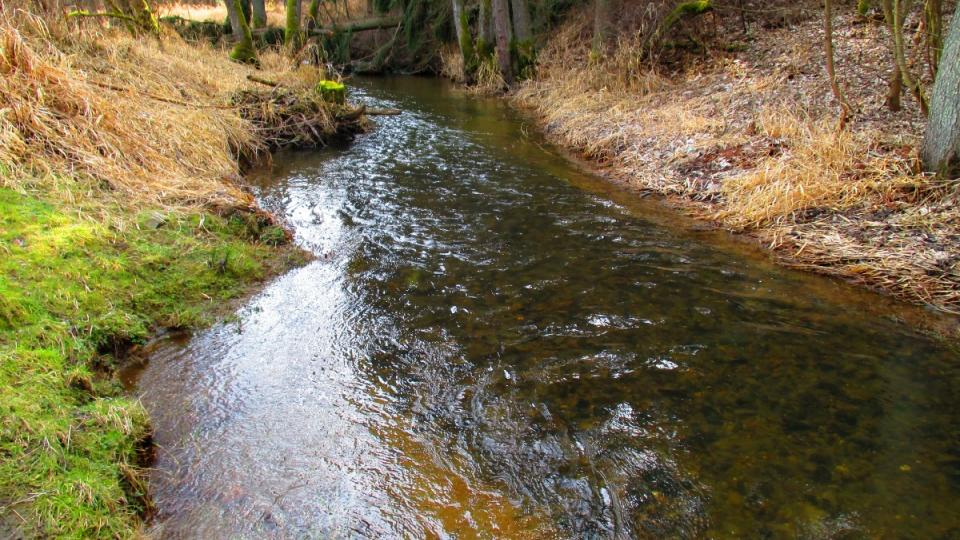 Potok jménem Hadovka