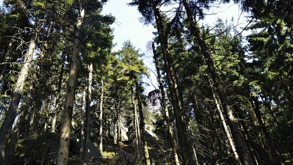 Čapí vrch s rozhlednou