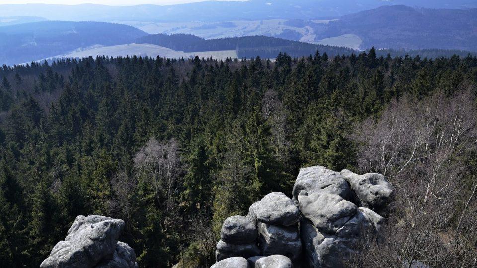 Jestřebí hory z rozhledny Čáp