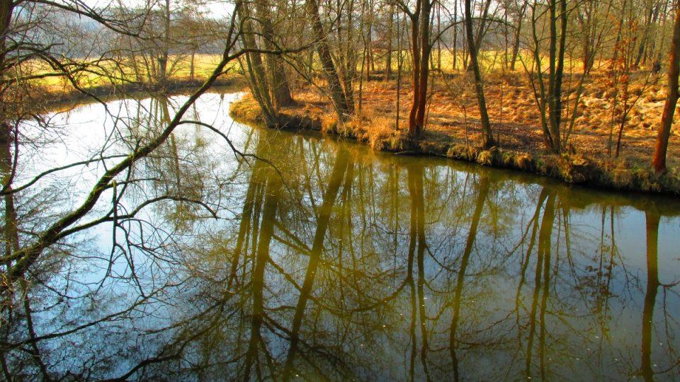 Řeka Radbuza z Lávky Járy Cimrmana