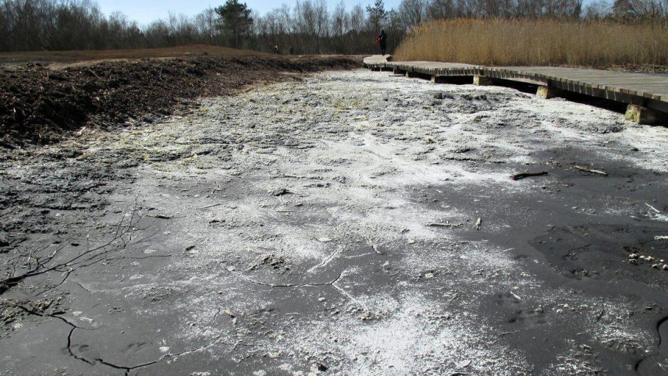 Krystalizující sůl v rezervaci
