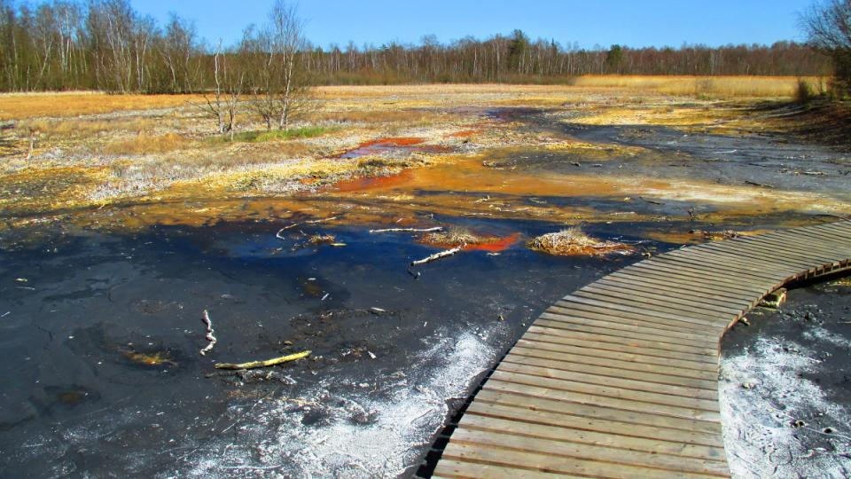 Rezervací projdete suchou nohou díky povalovému chodníku