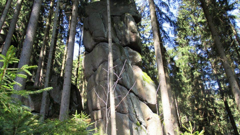 I další věže ukrývá les