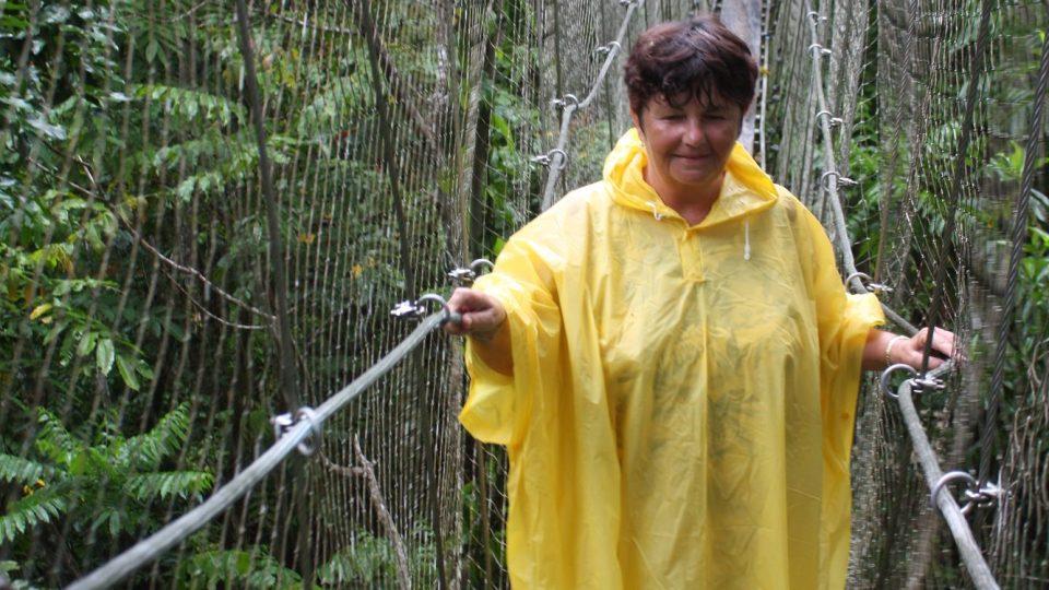 Samoa - Savai´i - na procházce v korunách stromů v deštném lese Falealupo