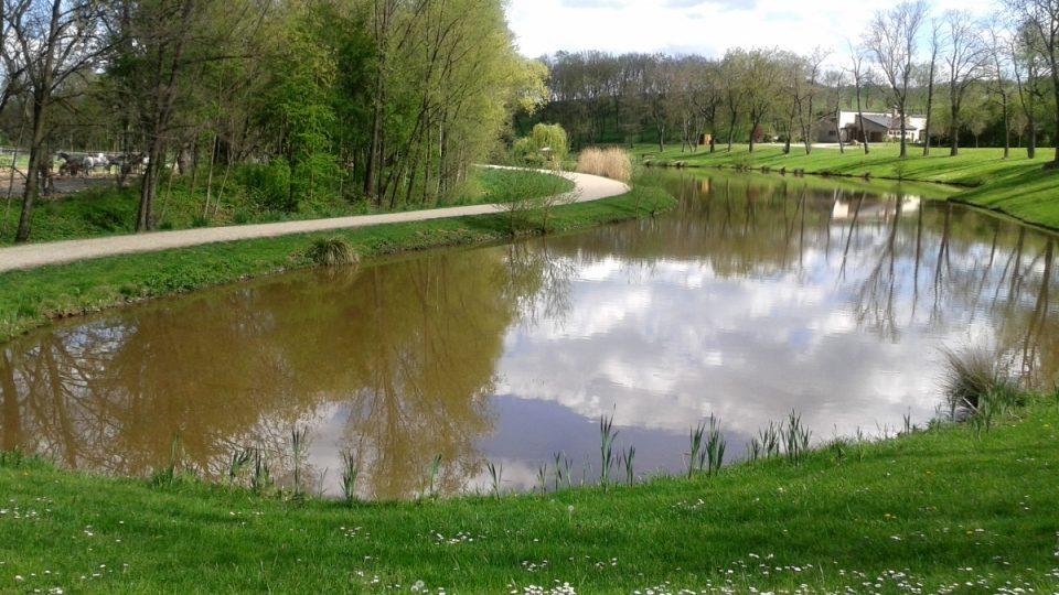 Rybník Na Rybníčkách a koňská stezka