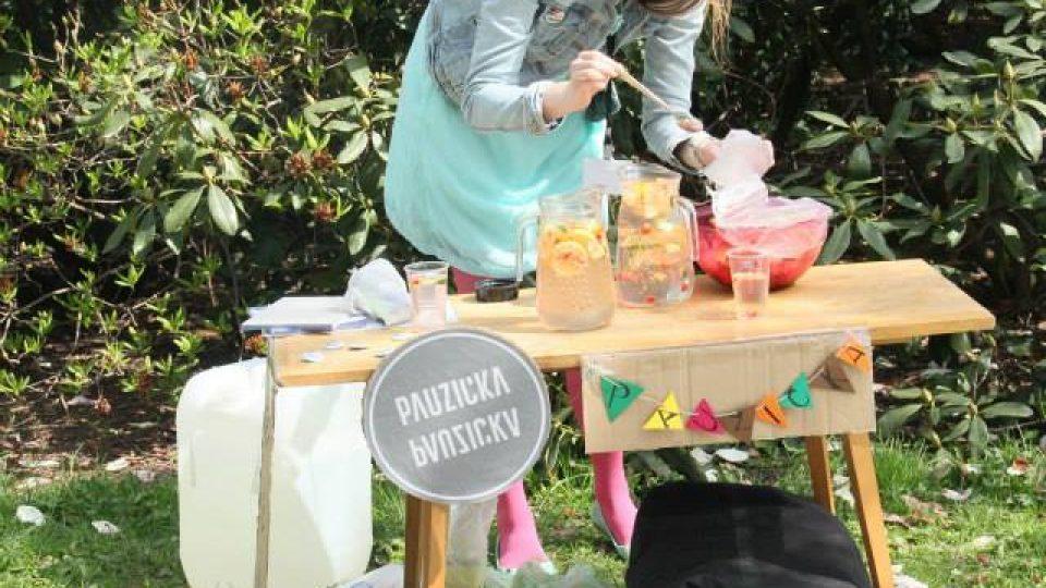 Piknik s Pauzičkou