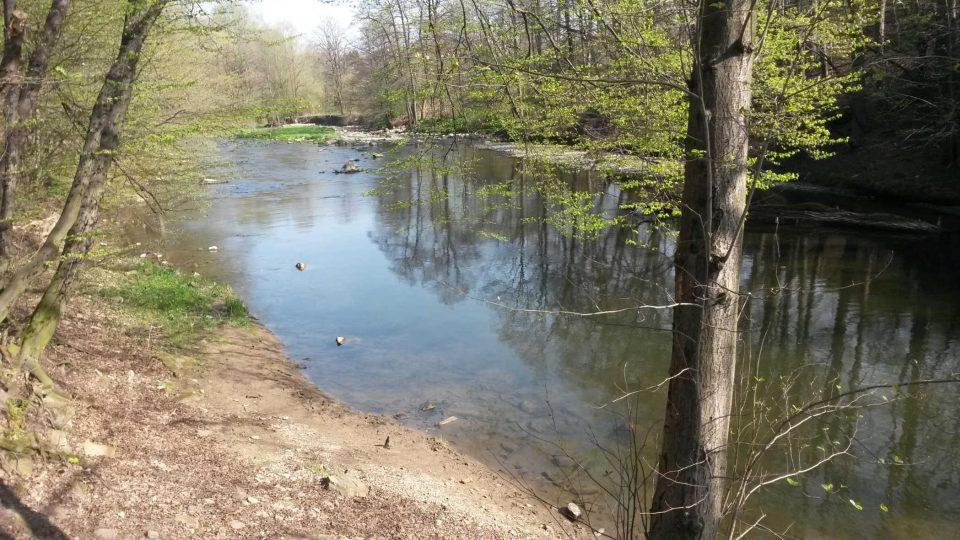 Řeka Olše, které místní neřeknou jinak než Olza