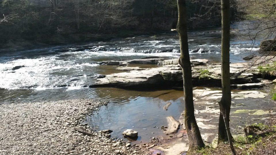 Řeka Olše v Hrádku