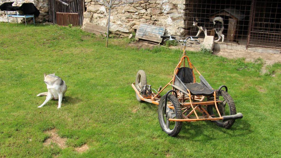 Vůz pro psí spřežení
