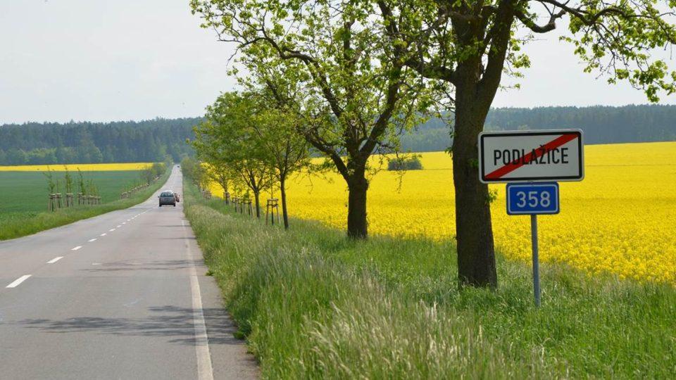 Alej podél silnice Podlažice – Přibylov