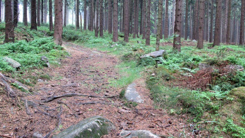 Cestou do kopce samá karlovarská hrubozrnná žula