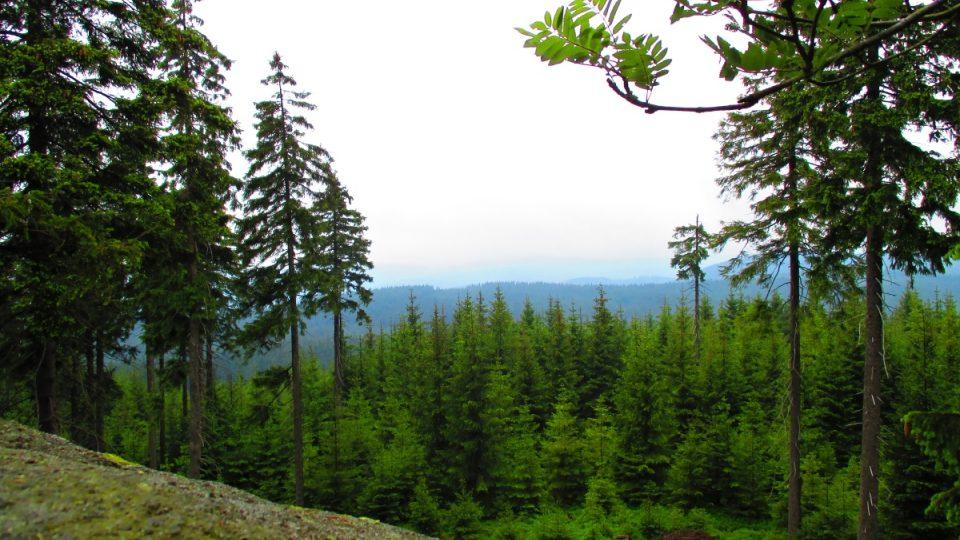 Výhled z vrcholové plošiny Hraběcí skály