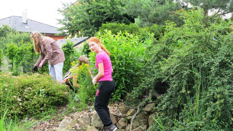 Projekt zaměřený na úpravu školní zahrady