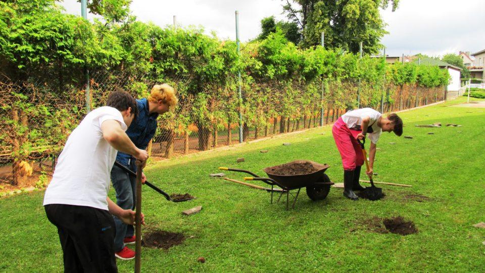 Studenti připravují místo pro nové stromy