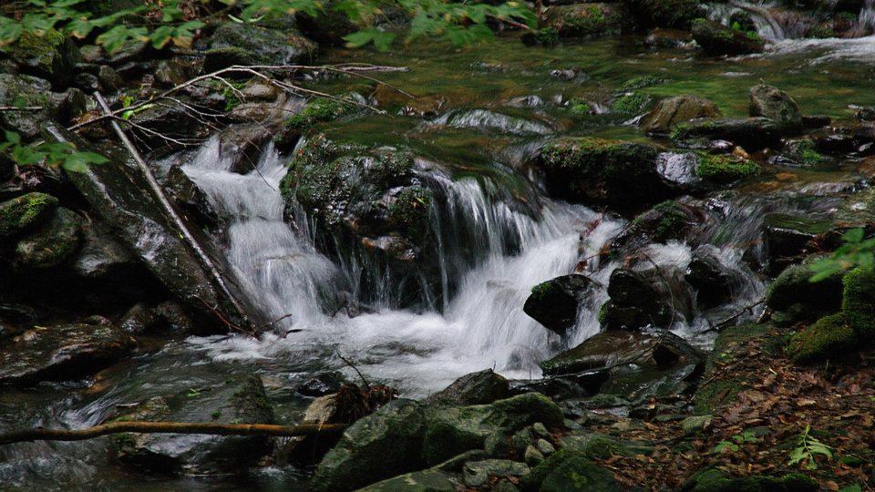 Ać se to nezdá i kaskády studeného potoka mohou být významným biotopem