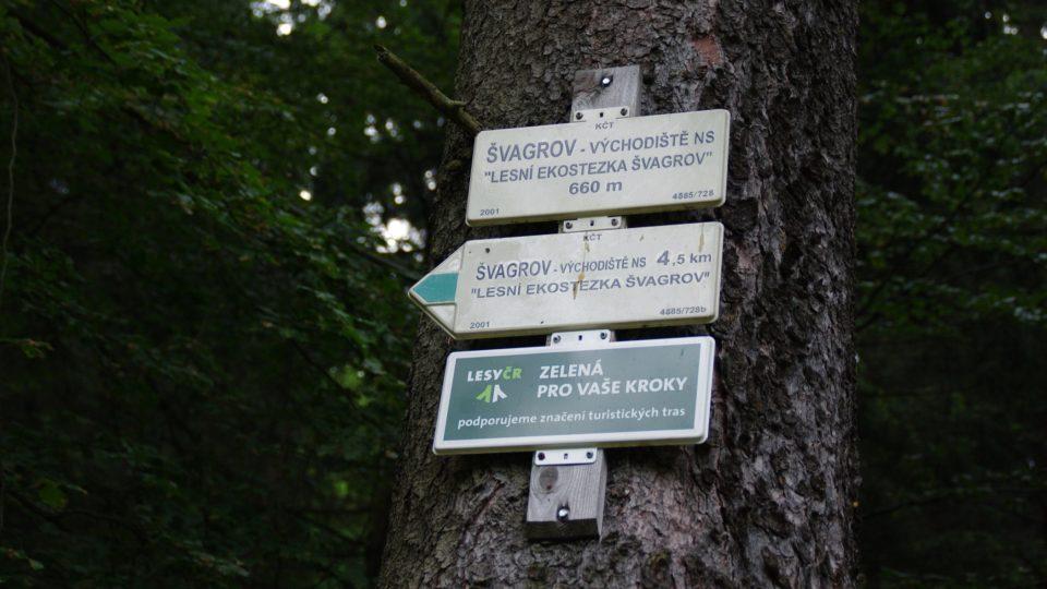 Průvodcem po stezce je zelená turistická značka