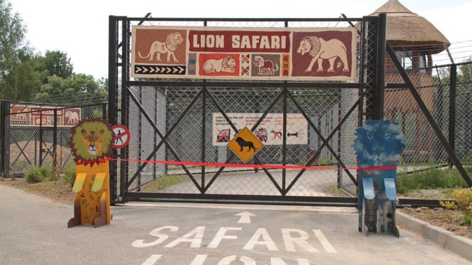 Vjezd do Lvího safari