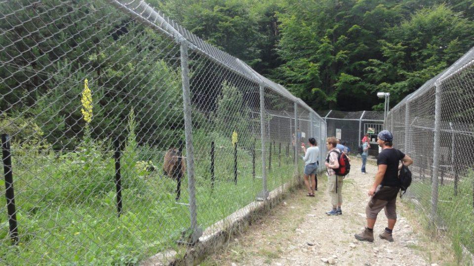 Mezi sektory obehnanými ploty vedou cestičky pro návštěvníky