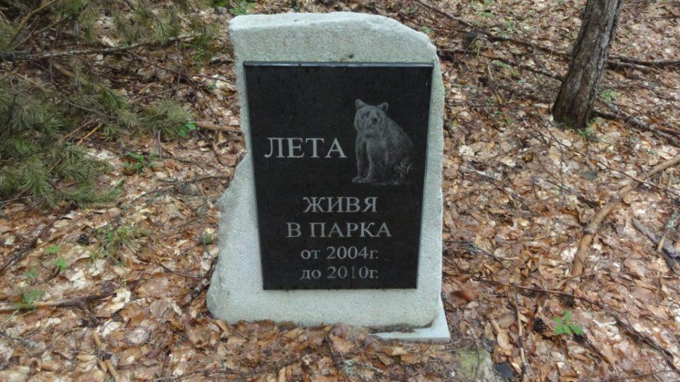 Park medvědy vykupoval od roku 2000. Někteří už zemřeli.