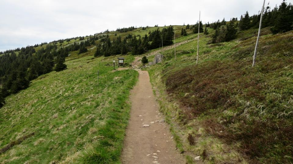 Jedna z cest k prameni Moravy