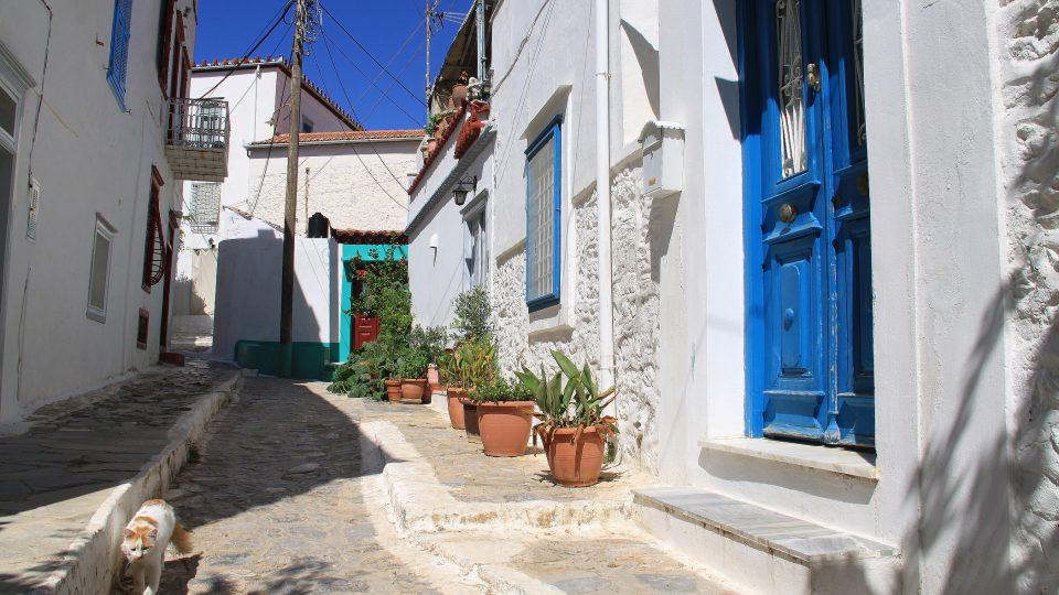 Toulavé kočky, to je něco, co k ospalé atmosféře řeckých ostrovů skutečně patří