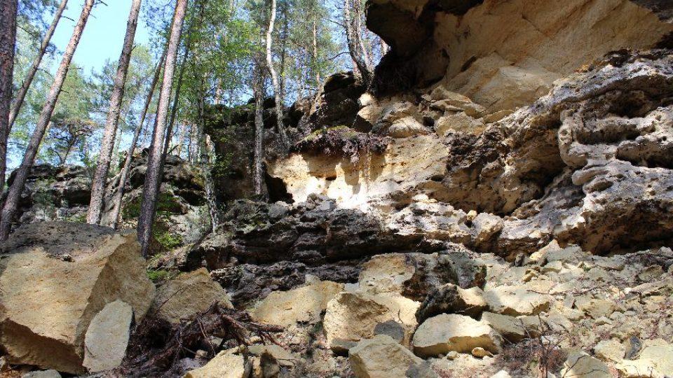 Čerstvé sklaní řícení, které odhalilo zkameněliny mušlí