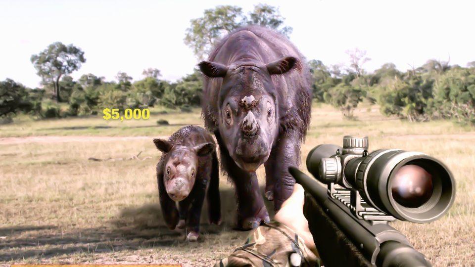 Vybíjení nosorožců