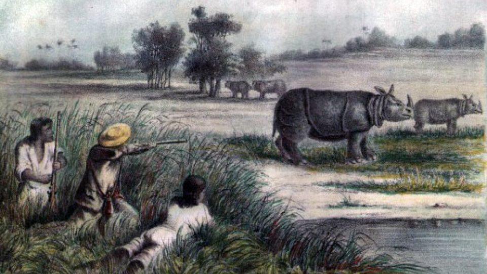 Lovení nosorožců (1861)