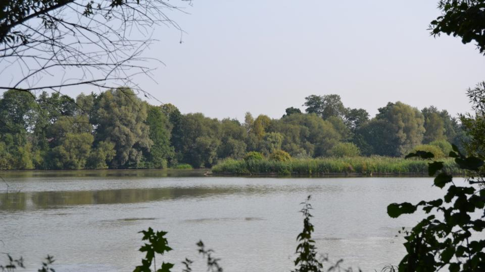 Rybník Skučák