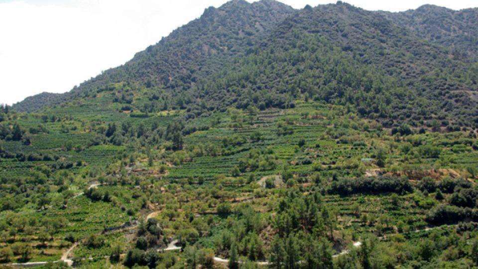 Pohoří Troodos v kyperském vnitrozemí