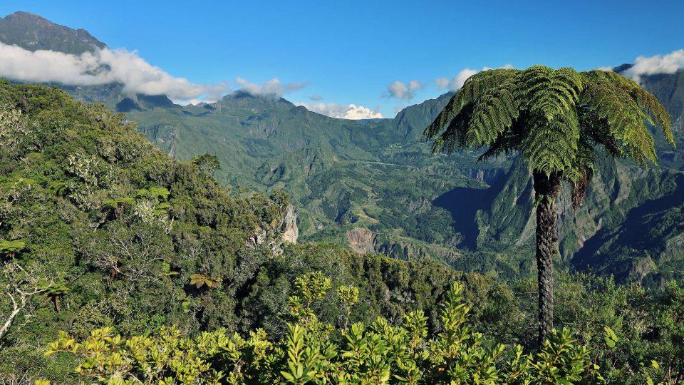 Réunion mne naprosto okouzlil. Tento poměrně malý ostrov, který autem objedete bez problémů za dva dny není v našich končinách zatím považován za atraktivní turistickou destinaci