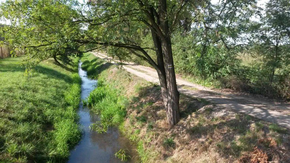 Potok Ščučí