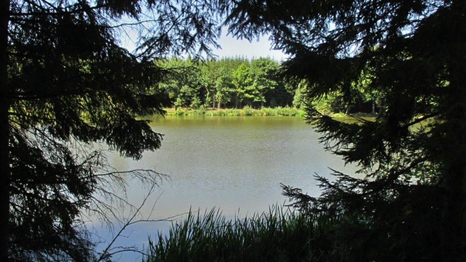 Jen lesy a rybníky