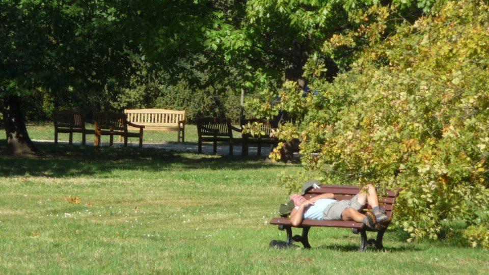 Do Stromovky za aktivním i pasivním odpočinkem dorazí ročně na 2 miliony lidí