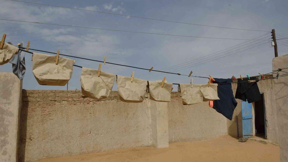 Sušení archeobotanických vzorků odebraných při výzkumu palácového a chrámového komplexu na lokalitě Usli
