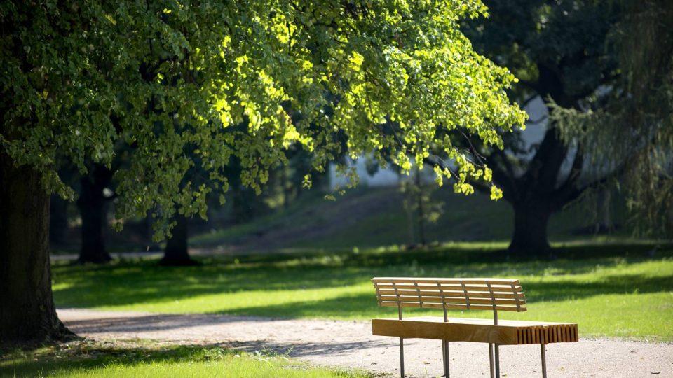 Dřevěná lavička v Tyršových sadech