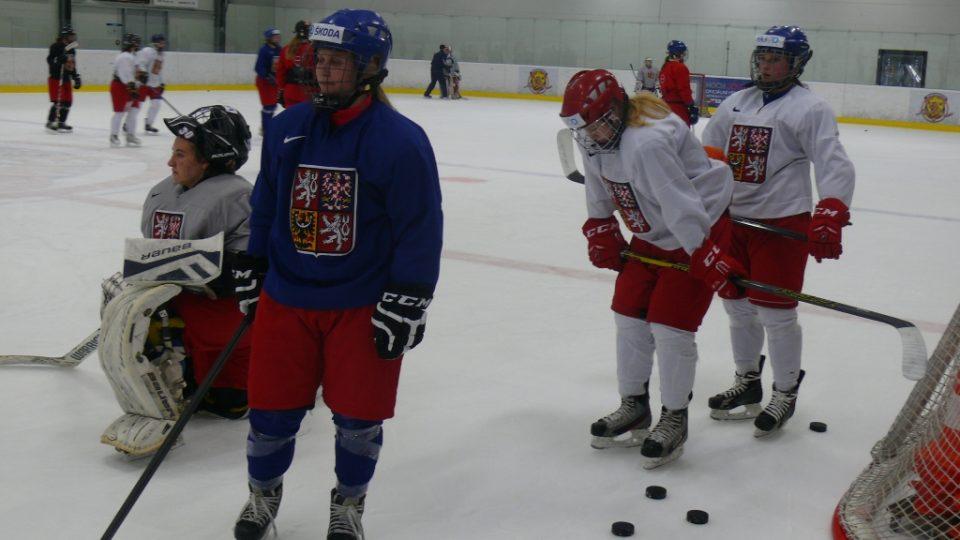 Do Hokejového centra Pouzar v Budějovicích vyrazily české reprezentantky. Na ledové ploše s nimi piloval dovednosti vítěz z olympijských her v Naganu David Moravec