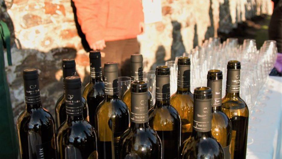 V Krumlově vysadili novou vinici. Nachází se nedaleko zahradního domku Egona Schieleho