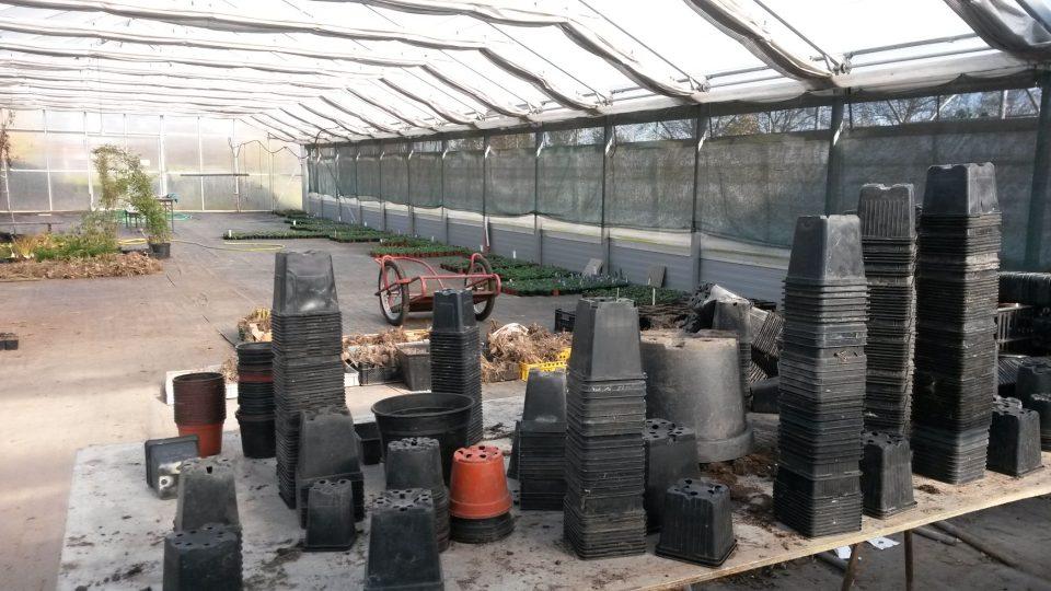 V kunínském zahradnictví řemeslo poznávají učni odborného učiliště a praktické školy z Nového Jičína
