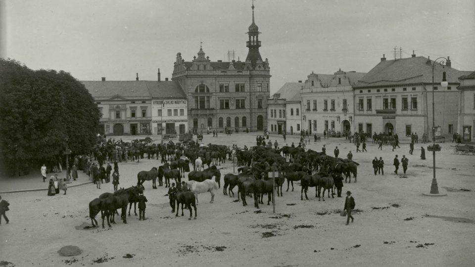 Odvod koní v roce 1914