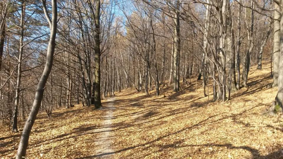 Beskydské traily na Horečkách