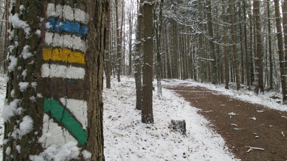Na Lopatu vede turistická trasa od Kornatického potoka