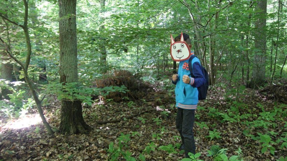 Miroslav v lese