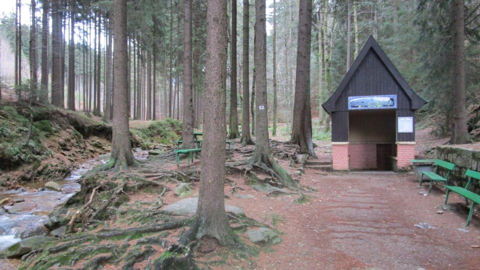 V lese poblíž města pramení novoměstská kyselka, která prý v minulosti uchránila Novoměstské před morem