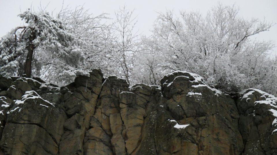 Na skalách trůní vzrostlá borovice